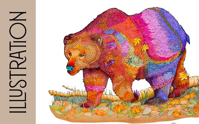 Illustration Artists Colorado Evergreen Gallery